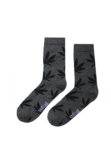 Spor Çorap-Bad Bear